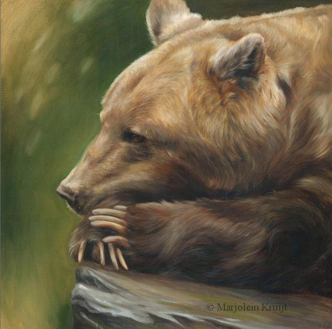 'Gedachten',Bruine Beer, 80x80 cm, olieverf schilderij (te koop)