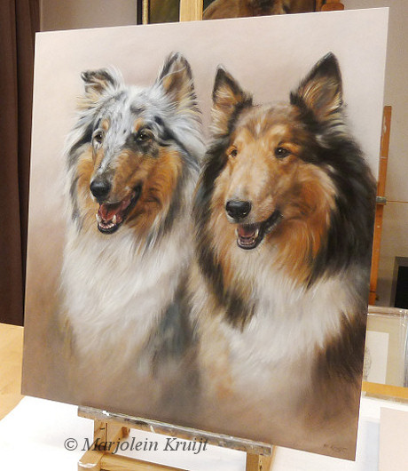 Collies schilderij - Huis dierportretten in opdracht