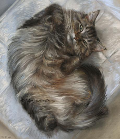 Schilderij maine coon portret in opdracht kattenkunst door Marjolein Kruijt