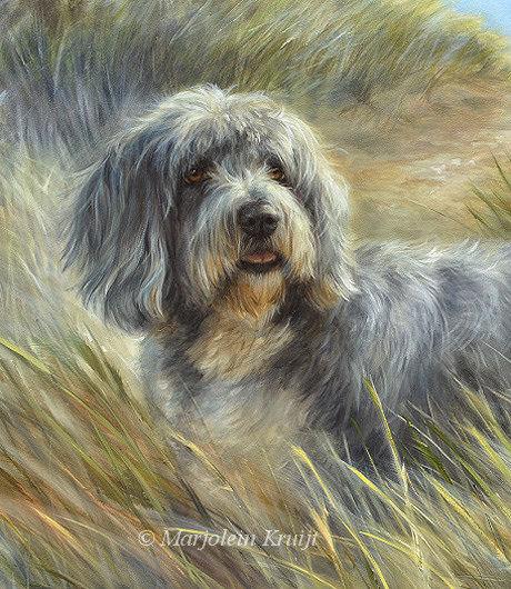 Schilderij portret bearded collie in opdracht door Marjolein Kruijt - hondenkunst