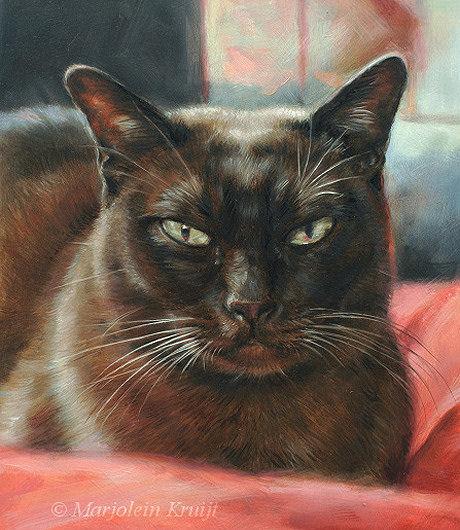 Schilderij burmees portret in opdracht, kattenkunst door Marjolein Kruijt