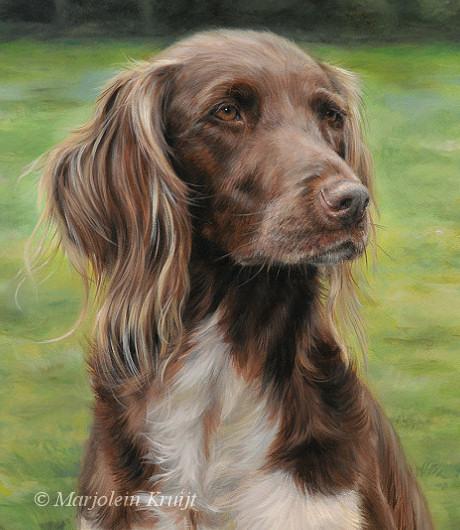 Portret schilderij heidewachtel in opdracht door Marjolein Kruijt hondenkunst