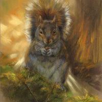 'Eekhoorn', 22x29 cm, pastel, €650 incl. lijst