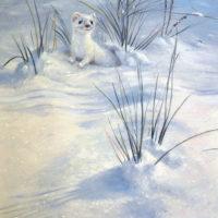 'Hermelijn', 22x30 cm, olieverf schilderij, €980 incl. lijst