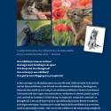 boek2- inspirerend-dierenteken-schilderen-marjoleinkruijt-achter