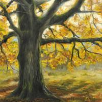 'Boom in de herfst', 30x30 cm, olieverf schilderij, (te koop)