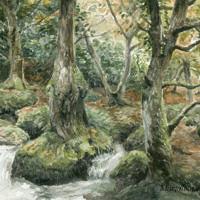 'Becky waterfalls', 25x19 cm, aquarel, (te koop)