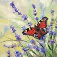 'Dagpauwoog op lavendel', 13x18 cm, olieverf schilderij, €750 incl. lijst