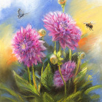'Dahlias', 22x27 cm, pastel, €650 incl. lijst
