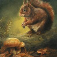 'Eekhoorn in de herfst', 18x24 cm, olieverf schilderij, €950 incl. lijst