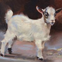 'Geitje', 24x18 cm, olieverf schilderij, €950 incl. lijst