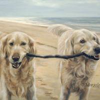 'Golden retrievers op het strand', 60x35 cm, olieverf schilderij (verkocht/opdracht)