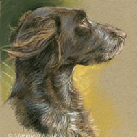 'Heidewachtel'-Brynja portret, 20x30 cm, pastel (verkocht/opdracht)