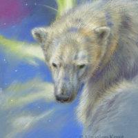 'Hoop'- ijsbeer bij Noorderlicht, 18x23 cm, pastel (verkocht)