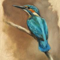 'Ijsvogel', 18x24 cm, olieverf schilderij (verkocht)