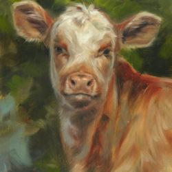 'Kalf', 18x24 cm, olieverf schilderij -op expo in USA-