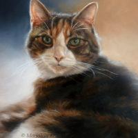 'Snoopy'-kattenportret, 30x40 cm, olieverf schilderij (verkocht/opdracht)