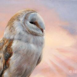 'Morning glory'-kerkuil, 40x25 cm, olieverf schilderij (verkocht)
