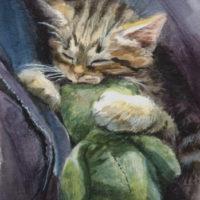 'Knuffel' - kitten portret, 11x15 cm, aquarel (NTK)