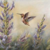 'Kolibri schilderij' (Selasphorus Rufus), 18x24 cm, olieverf schilderij- €650 incl. lijst