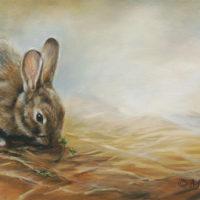 'Konijn', 60x30 cm, olieverf schilderij (verkocht)