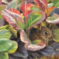 'Jong konijntje', 18x24 cm, olieverf schilderij, €950 incl. lijst