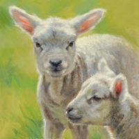 'Lammetjes', 20x26 cm, olieverf schilderij, €980 incl. lijst