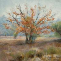 'Lheebroekerzand4'-Drenthe, 30x30 cm, olieverf schilderij (verkocht)