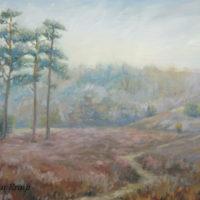 'Lheebroekerzand7'-Drenthe heide, 60x40 cm, olieverf, (te koop)