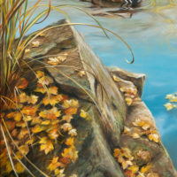 'Autumn colours' -mandarijneend, 60x40 cm, olieverf, €2200 incl. lijst