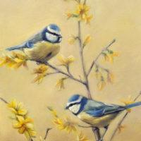 'Lente' - pimpelmezen, 18x24 cm, olieverf schilderij, €950 incl. lijst