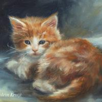 'Rode kitten', 18x13 cm, olieverf schilderij (verkocht)