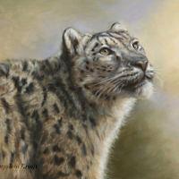 'Sneeuwluipaard', 60x40 cm, olieverf schilderij (NTK)