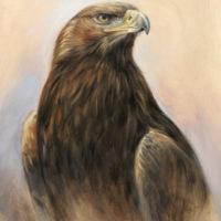 'Steenarend', 30x40 cm, olieverf schilderij, €1400 incl. lijst