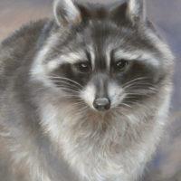 'Wasbeer', 18x24 cm, olieverf schilderij (verkocht)