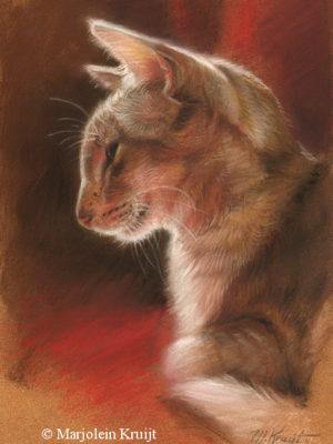 'Yoda sunlit' -Oosters korthaar portret, 18x25 cm, pastel (NTK)
