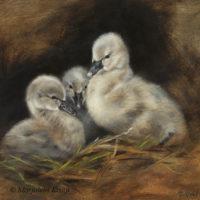 'Zwarte zwaantjes', 20x20 cm, olieverf schilderij -op expo in USA-