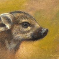 'Zwijntje', 18x13 cm, olieverf schilderij (verkocht)