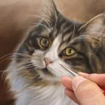 Workshop masterclass dieren schilderen tekenen marjolein Kruijt
