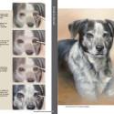 Boek dieren teken en schilderen met Marjolein Kruijt-preview4
