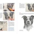 Boek inspirerend dieren teken en schilderen met Marjolein Kruijt-preview3
