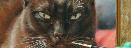 burmees kattenportret in opdracht Marjolein Kruijt