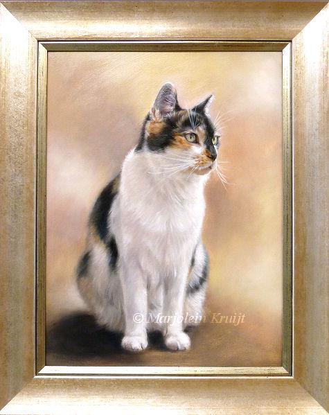 kattenportret in opdracht ingelijst Marjolein Kruijt