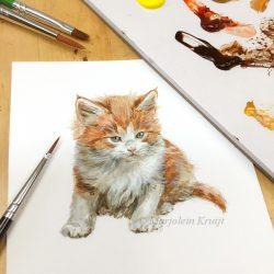 Maine coon kitten schilderij door Marjolein Kruijt