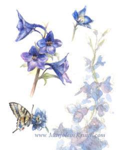 Delphinium flower in watercolour by Marjolein Kruijt