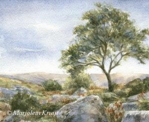Dartmoor landscape in watercolour- painting by Marjolein Kruijt