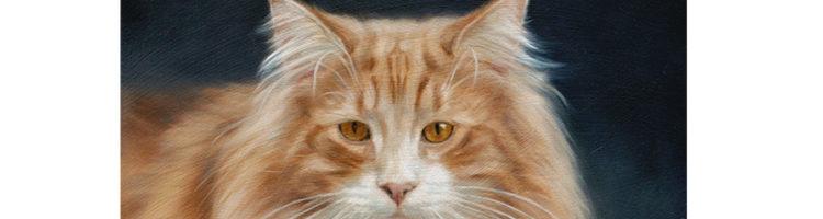 Noorse boskat katten portret, schilderij door Marjolein Kruijt