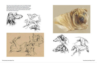 Preview Book painting and drawing animals