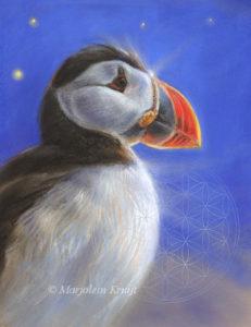 Dierensymboliek: Papegaaiduiker, pastel schilderij door Marjolein Kruijt