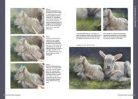 Boek dieren tekenen en schilderen met Marjolein Kruijt-LAMMETJES-preview